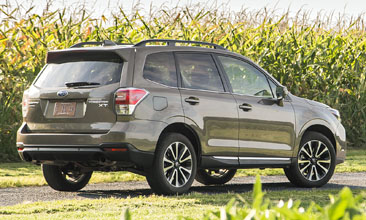 2Forester_rear