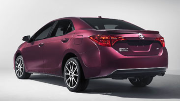 Corolla50th_rear