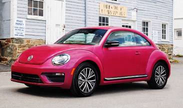 Beetle-Front