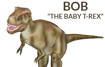 FeatBobDinosaur